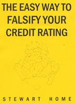 The Easy Way To Falsify Your Credit Rating by Stewart Home cover